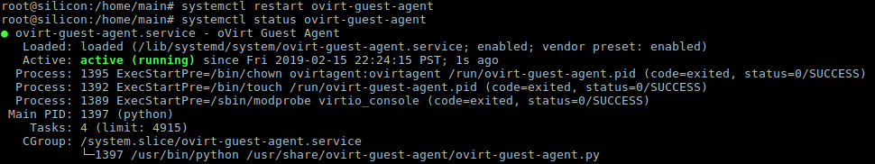 Guest agent successfully started with systemctl restart